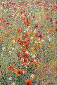 Cascading Poppies,