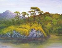 Rocky Outcrop, Letterfrack