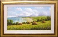 Mayo Coast