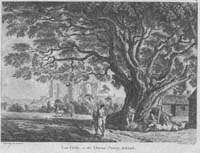 Lea Castle, in the Queens-County, I