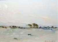 Flooded Field, Connemara - Thelma Mansfield