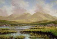 Near Glen Hohan (13/06),