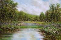 River Banks, Erriff Valley (25/07),