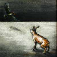 The Odyssey of a Hare XIV