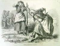 Women at Field-work in Roscommon