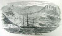 The Iron screw steam-ship