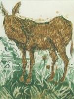 Donkey 33/50
