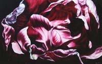 Unravelling Tulip