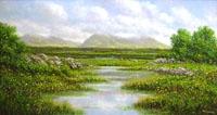 Roundstone Bog,