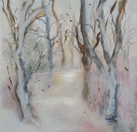 Barna Woods in Winter