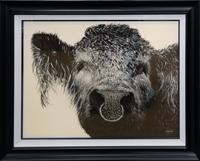 The Bull McCabe