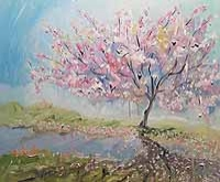 Blossom Shadows