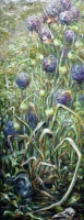In the Garden (Allium)