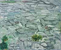 Clints and Grikes, Burren