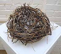 Outsize Nest of Contorted Willow Twigs