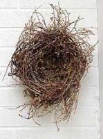 Outsize Catkined Nest