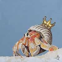 Animal Kingdom VI