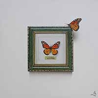 Papillion