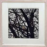 Watcher Bird