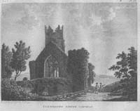 Clonmines Abbey