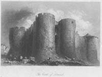 Castle of Limerick, The