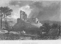 Cappage Castle, Limerick