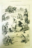 Sketches Among The Irish Peasantry: