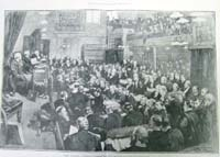 The Irish Parliamentary Party, 1886