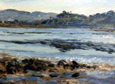 The Fast Receding Tide, Cashel Bay - Rosemary Carr