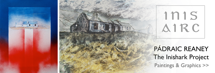 Inis Airc - The Inishark Project, Pádraic Reaney at The Kenny Gallery
